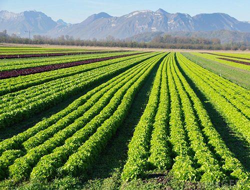 biologisch boeren