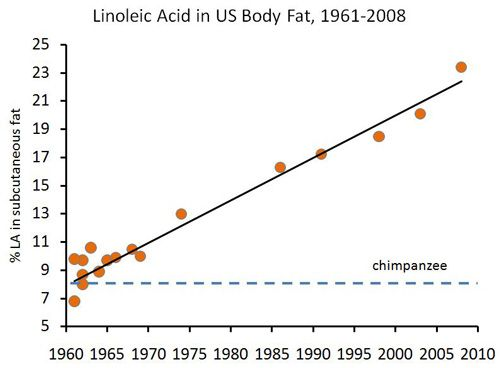 Linoleenzuur in lichaamsvet, VS, 1961-2008