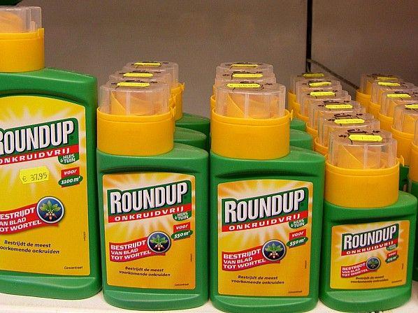 Glyfosaat Monsanto