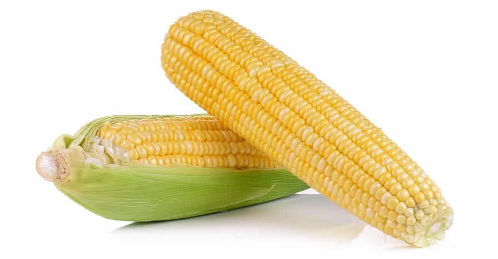 de voedingswaarde van mais - voeding en gezondheid - ahealthylife.nl