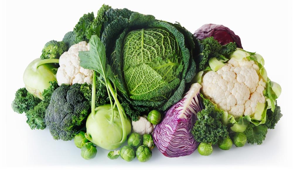 Kruisbloemigen Brassica soorten