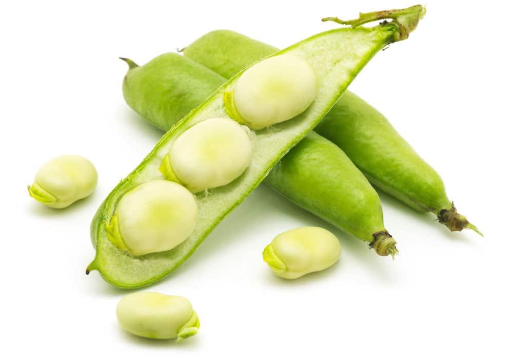 de voedingswaarde van tuinbonen - voeding en gezondheid