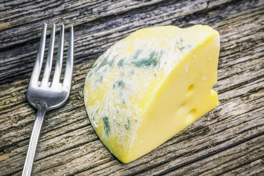Beschimmelde kaas