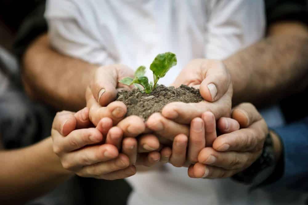 9 tips om je CO2-voetafdruk te verkleinen